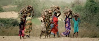 Crónicas desde el Foro Social Mundial 2011