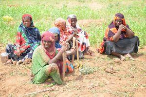 Mujeres campesinas, protectoras de la soberanía alimentaria internacional