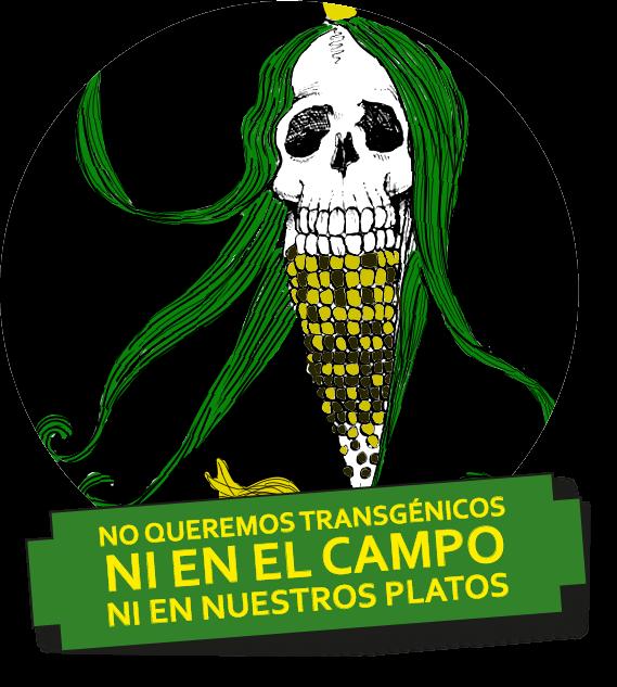¡NO A LOS TRANSGÉNICOS EN GUATEMALA!